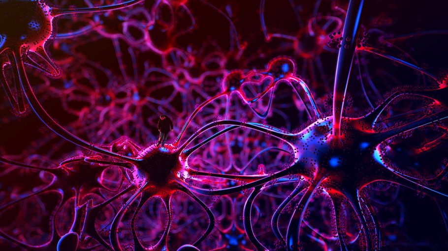 Walking In My Neuron Field