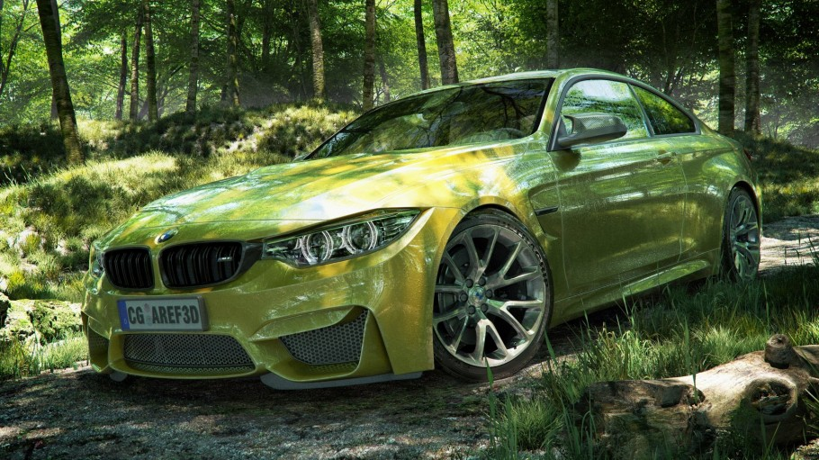Bmw In Forest Road
