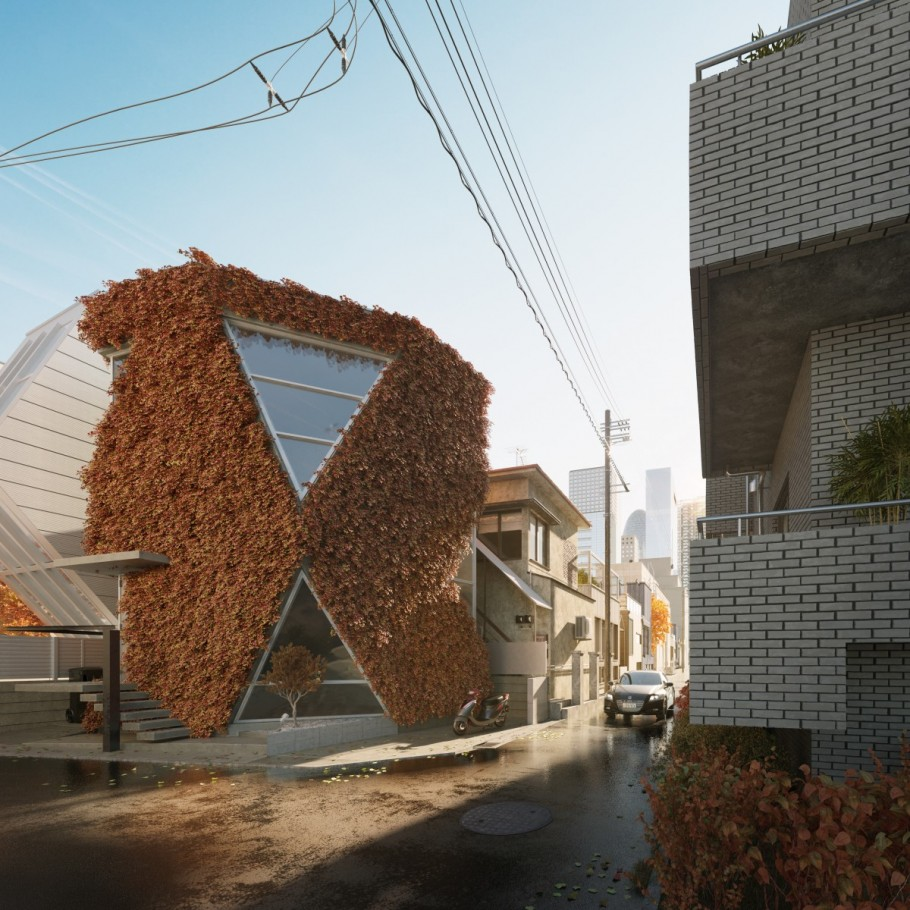 Angular Home / JAPAN