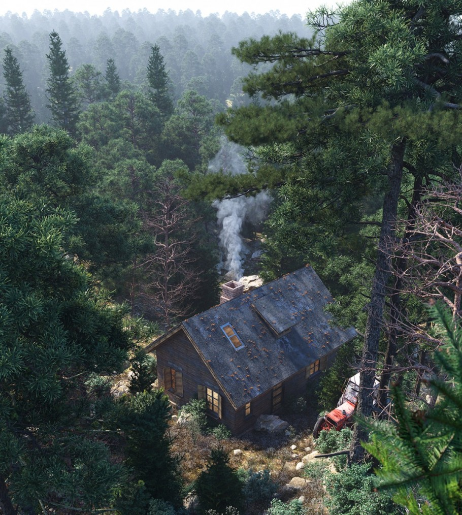 THE FOREST HOUSE 2