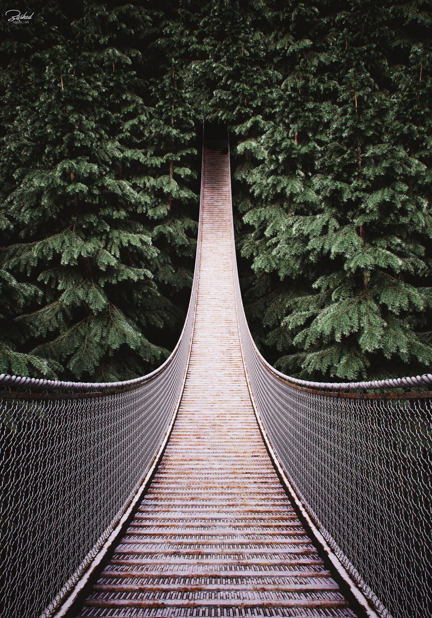 VWArtclub - Capilano Bridge